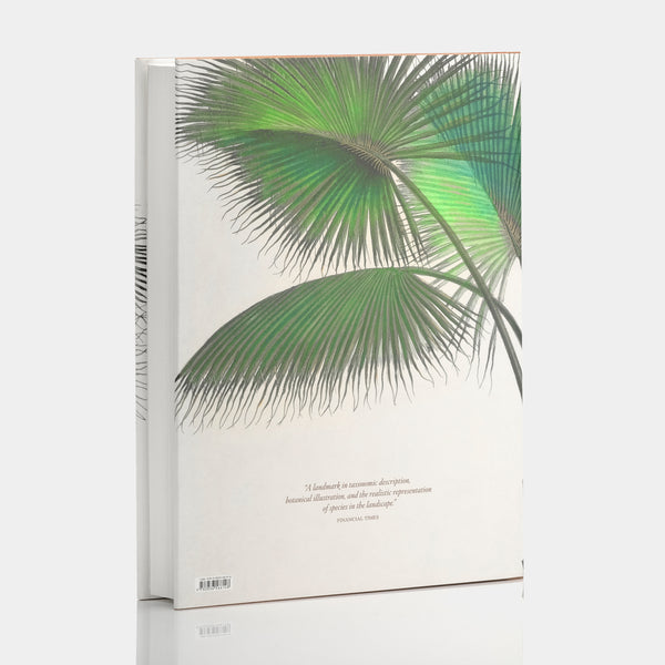 Martius. The Book of Palms XL Book