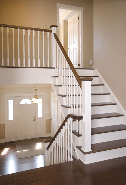 stairs with white risers and dark flooring
