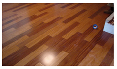 Color Variation in Hardwood Flooring