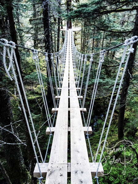 Suspension Bridge, Seward, Alaska