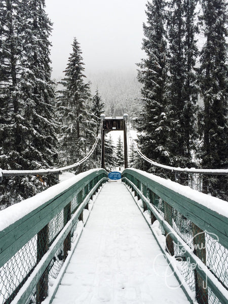 Toby Creek Suspension Bridge, BC, Canada