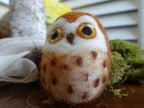 Needle Felted Owls Class