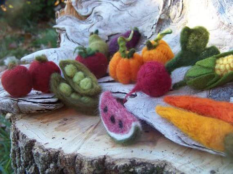 Needle Felted Fruits & Veggies Workshop