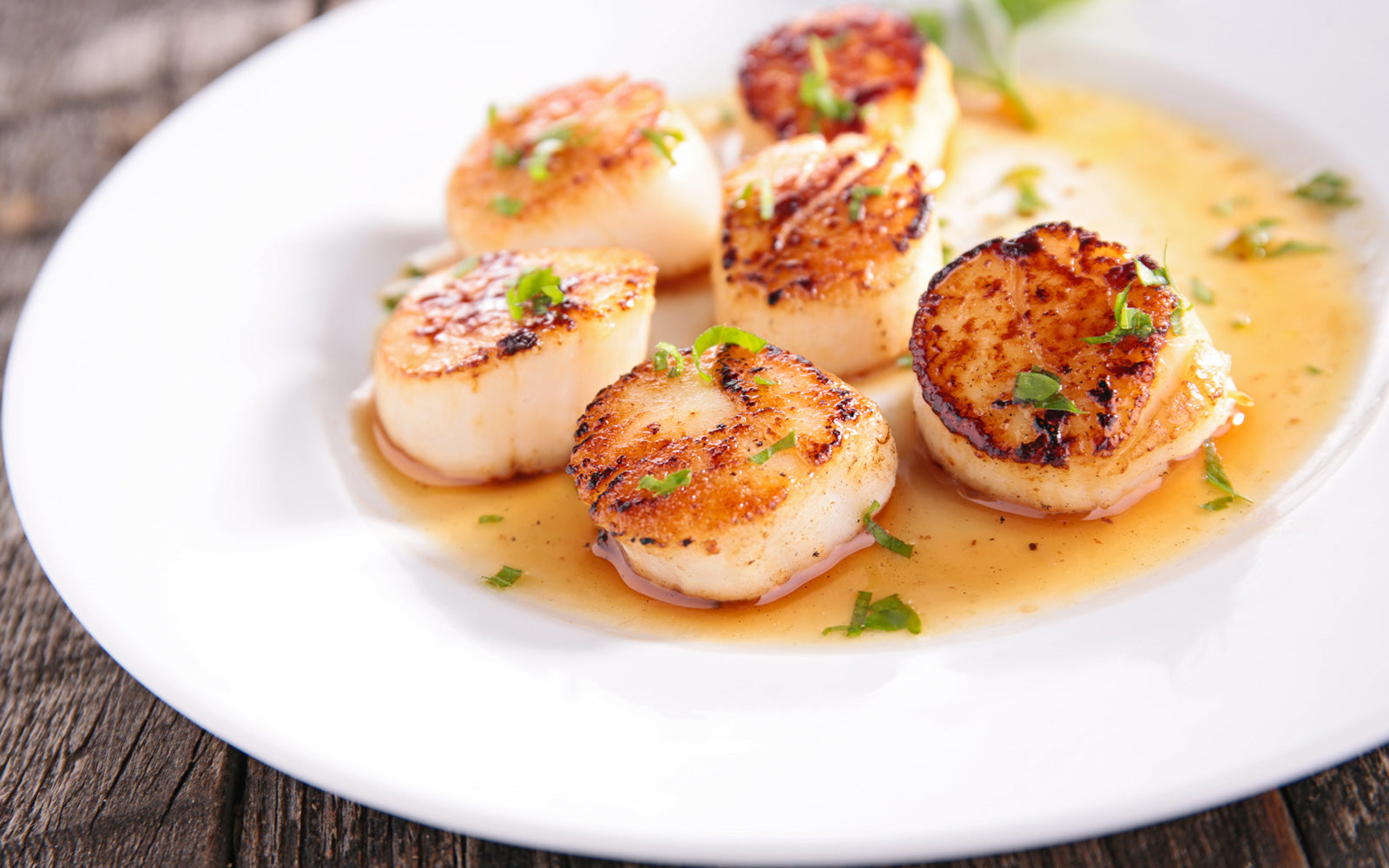 Pan Seared Scallops with Lemon Caper Sauce