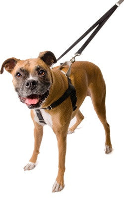 "Freedom ""No Pull"" Harness & Leash Set"