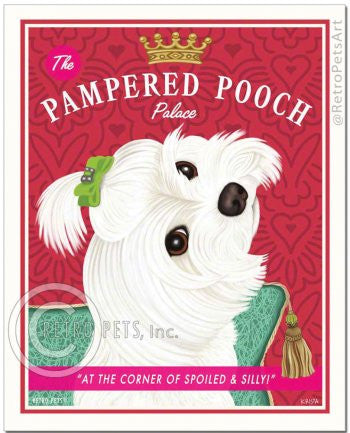 Maltese: Pampered Pooch Refrigerator Magnet