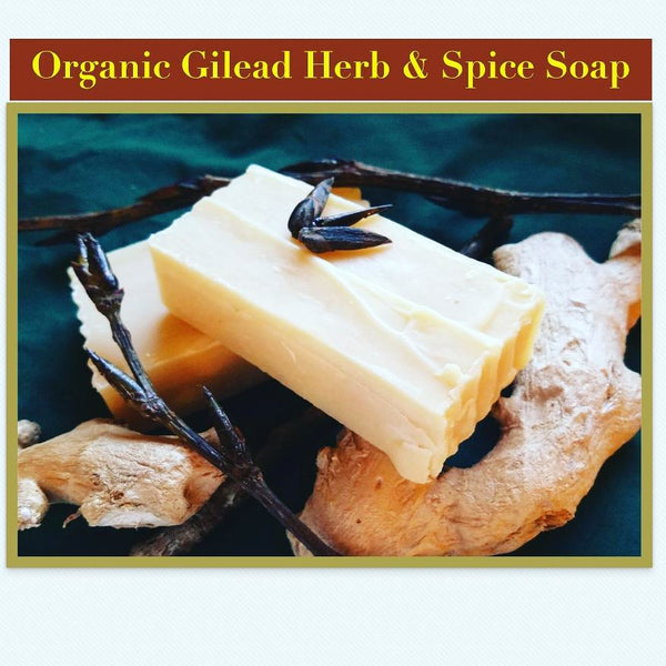 Organic Gilead Herb & Spice Soap