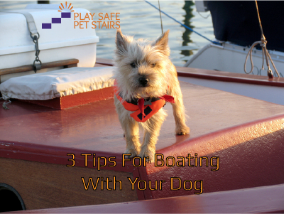 3 Tips For Boating With Dogs