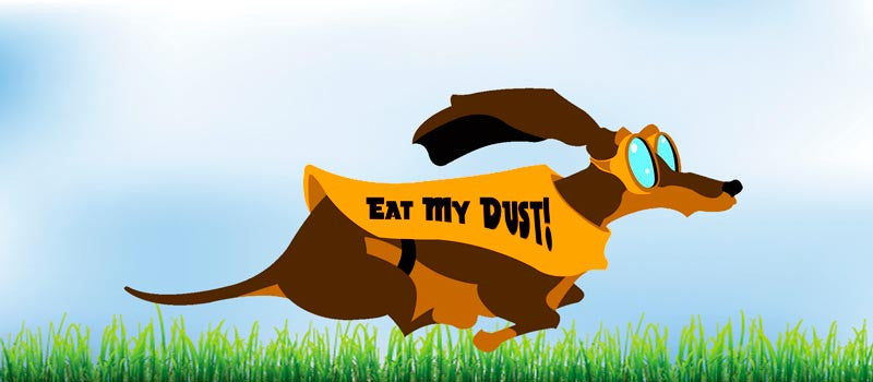 Dachshunds - These Ain't Your Mama's Couch Potatoes!