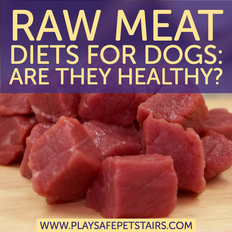 Raw Meat Diets for Dogs: Are They Healthy?