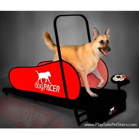 Dog Treadmill -DogPacer LF31
