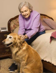 Large Dog with Elderly Woman