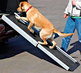 Dog Ramps for Trucks