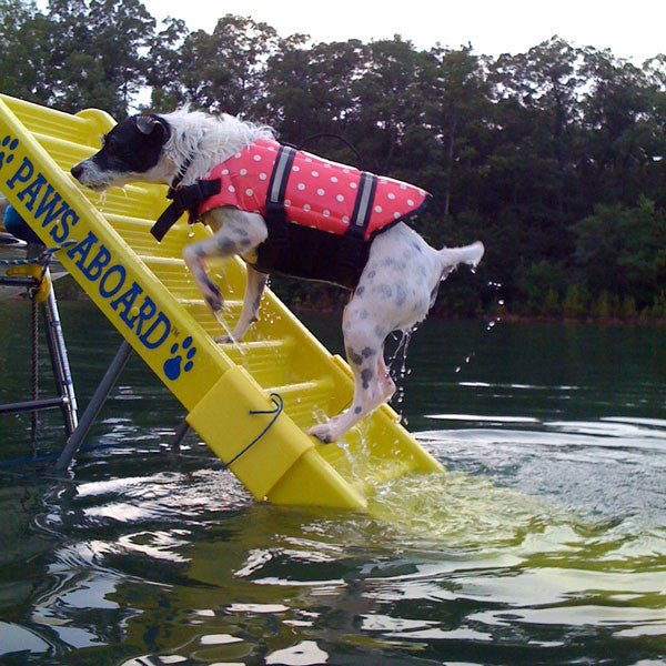 Paws Aboard Doggy Boat Ladder Play Safe Pet Stairs