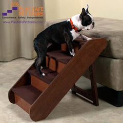 Boston Terrier on Dog Stairs for Bed
