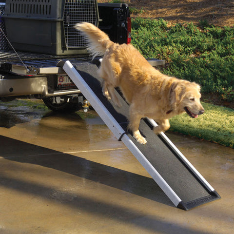 Dog Ramps for SUV