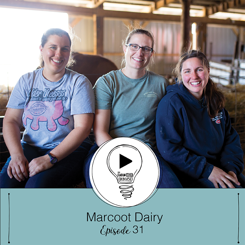 Shining Bright E31 | Marcoot Dairy