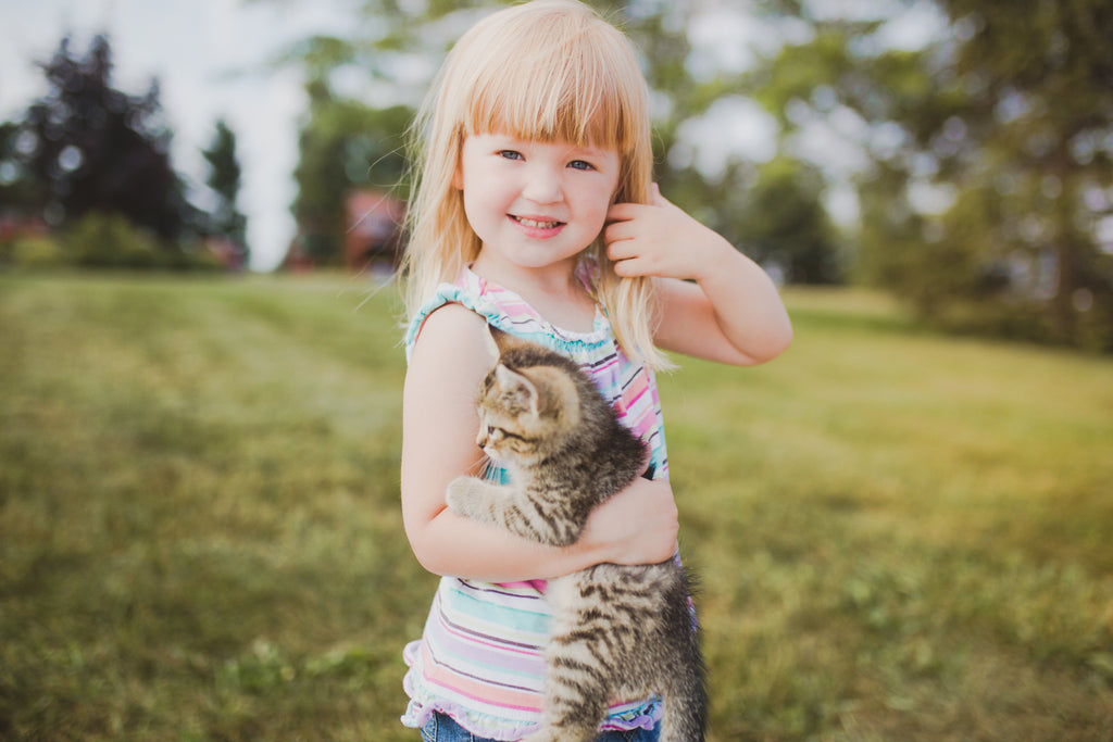 I caught up with Debbie, Rita, Rita's young daughter and of course a cute little farm kitty, at their Michigan farm.  This time of year the family was harvesting Rye so most of their day was planned around that.