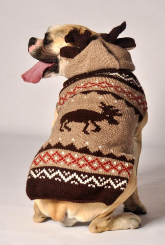 Chilly Dog Moosey Hoodie