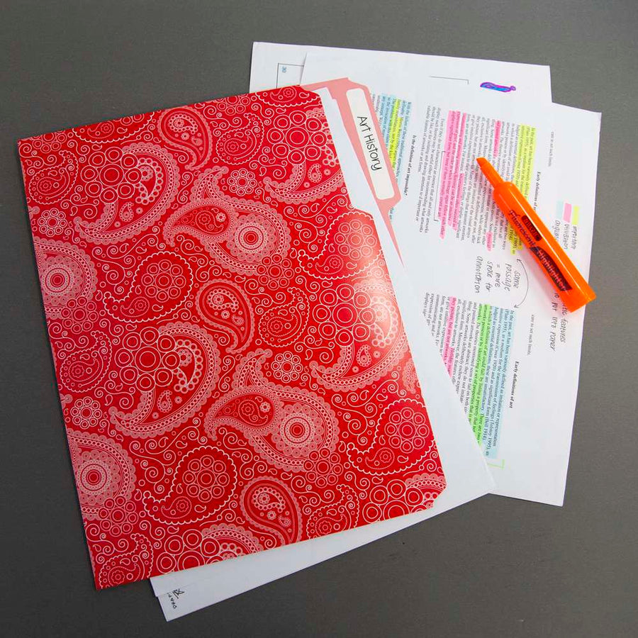 1/3 Cut Letter Size Paisley File Folder (3/Pack)
