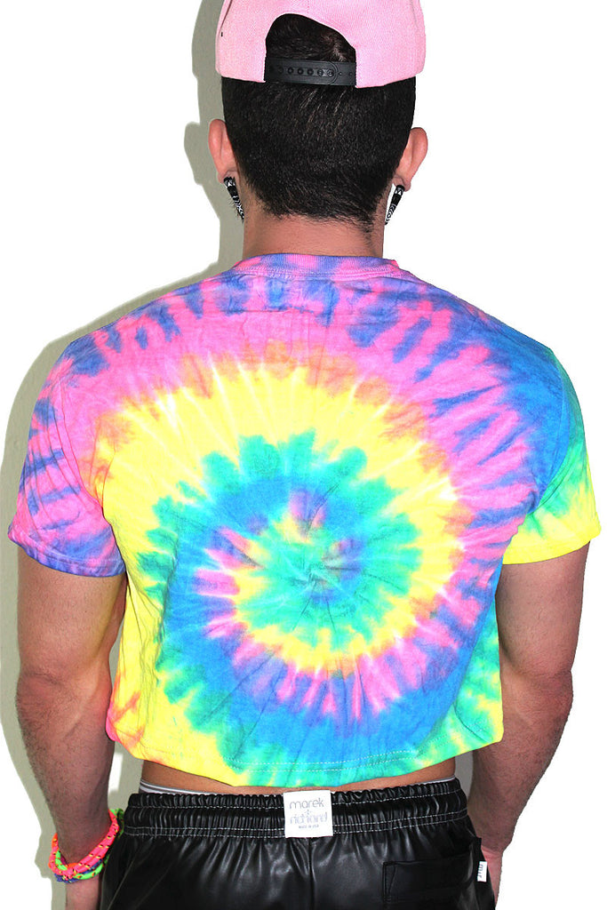 Gay Vibes Tie Dye Crop Tee- Multi