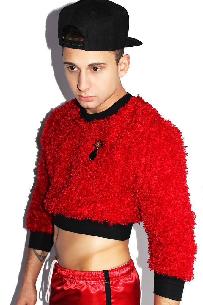 Plush Bomb Crop Long Sleeve Sweatshirt-Red