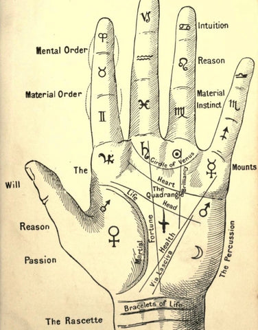 INTRODUCTION TO PALM READING & HAND MAGIC