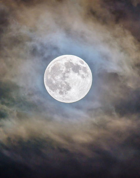 November Full Moon Circle Nov 11th