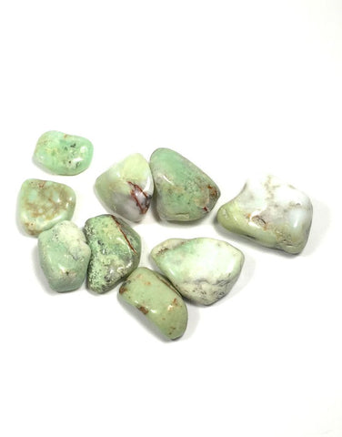Tumbled Chrysoprase