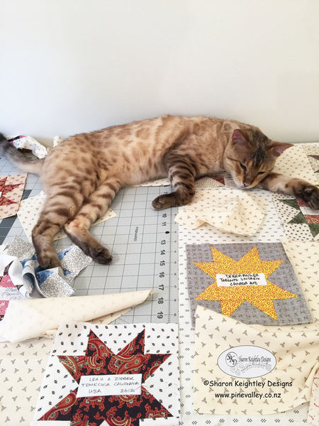 Benny | Pine Valley Quilts