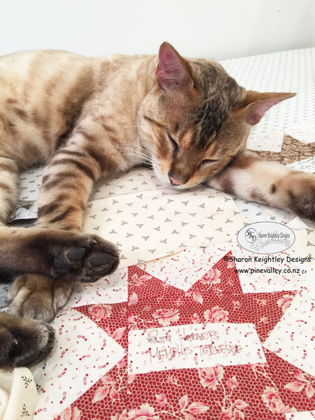 Benny and the cutting table | Pine Valley Quilts