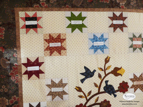 Friendship Stars Quilt | Pine Valley Quilts