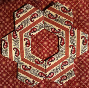 Hexagon Quilt / Growing Slowly /Pinevalley Quilts