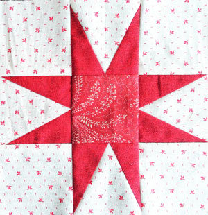 Simply Red Quilt Star Block / Pine Valley Quilts