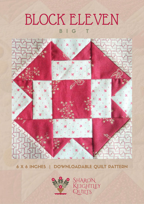 Simply Red Quilt Pattern BOM  Block Eleven - Pine Valley Quilts
