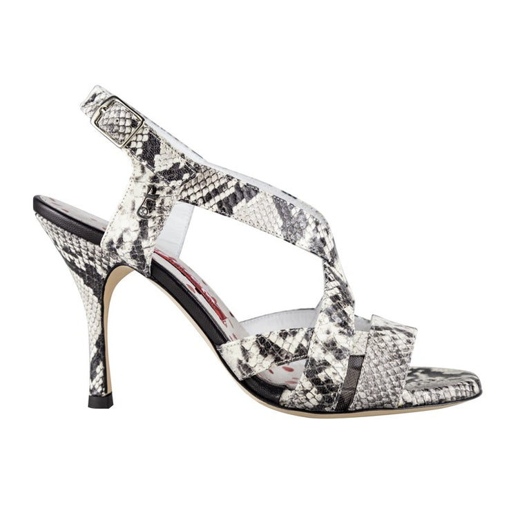 Latina - Python Stamped Leather (9cm) | Axis Tango - Best Tango Shoes