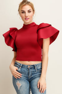 Burgundy Rose Panels Design Sleeve Scuba Knit Top