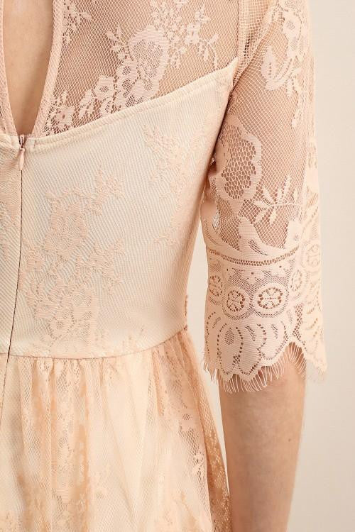 Blush See-Through Mid Sleeve Lace Dress