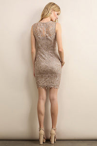 Lace Yoke Sheath Dress