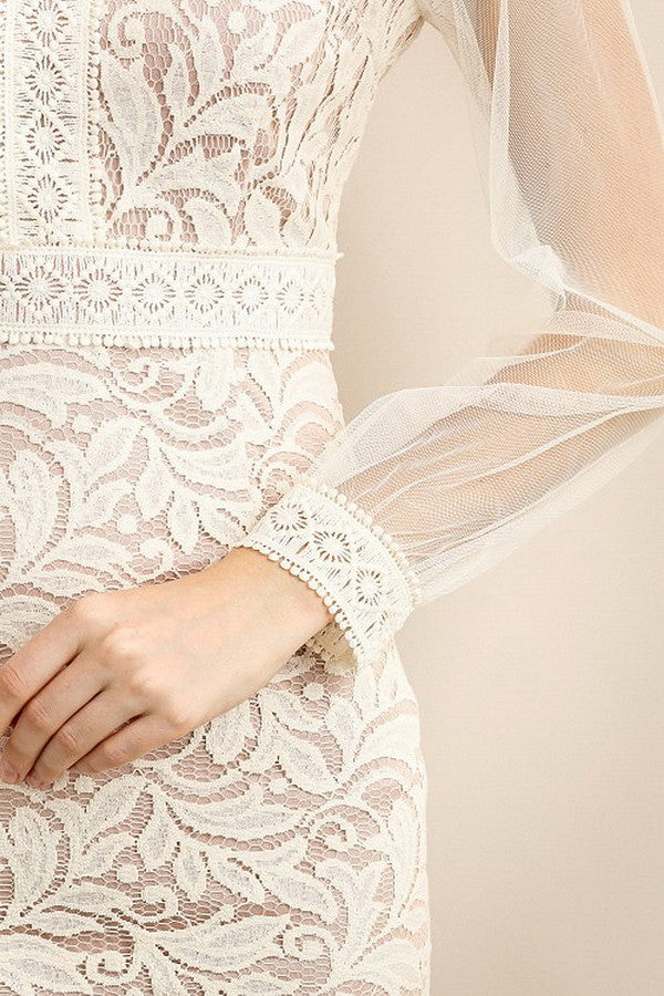 See-Through Mesh Long Sleeve Lace Dress