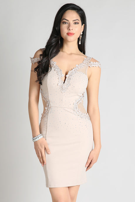 Taupe Sheer Contrast Lace Trim Cocktail Dress