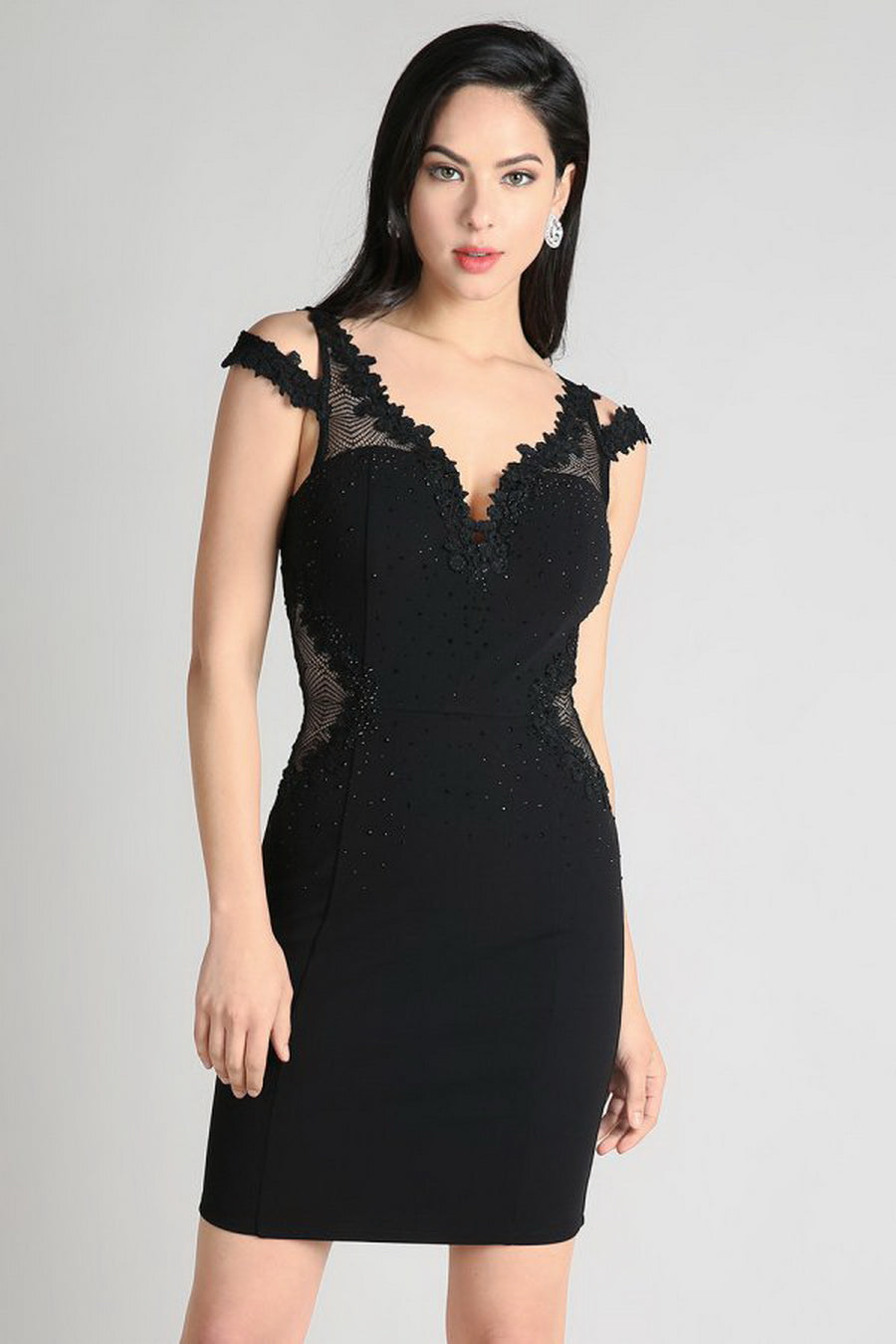 Black Sheer Contrast Lace Trim Cocktail Dress
