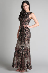 Sequin Netting Embroidered Long Dress
