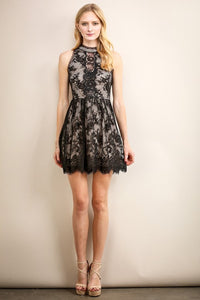 Black High Neckline Short Lace Dress