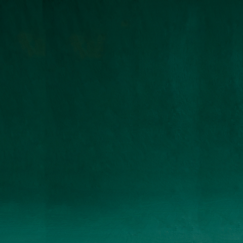 Solid Dark Green Photo Fashion Muslin Background