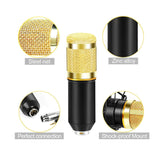 Professional Studio Vocal Recording Mic Condenser Microphone With Boom Holder Set ( karaoke, Recording & Broadcasting)