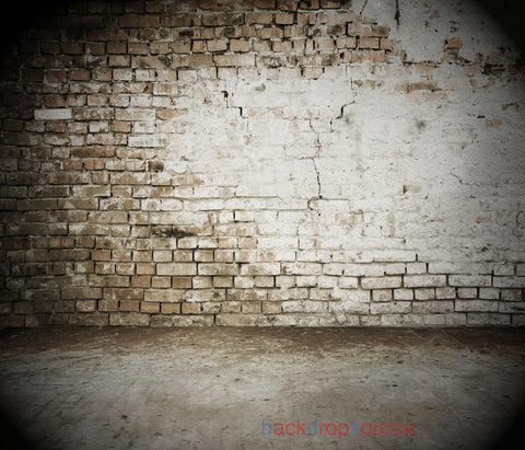 Half Painted Brick Wall Floor Print Photography Backdrop