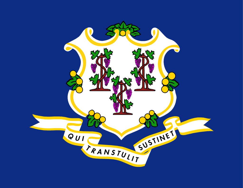 Connecticut State Flag in TrueKolor Wrinkle Free Fabric