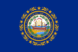 New Hampshire State Flag in TrueKolor Wrinkle Free Fabric