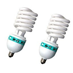 Pair Of 30 Watt Spiral Fluorescent Light Bulb Accessory